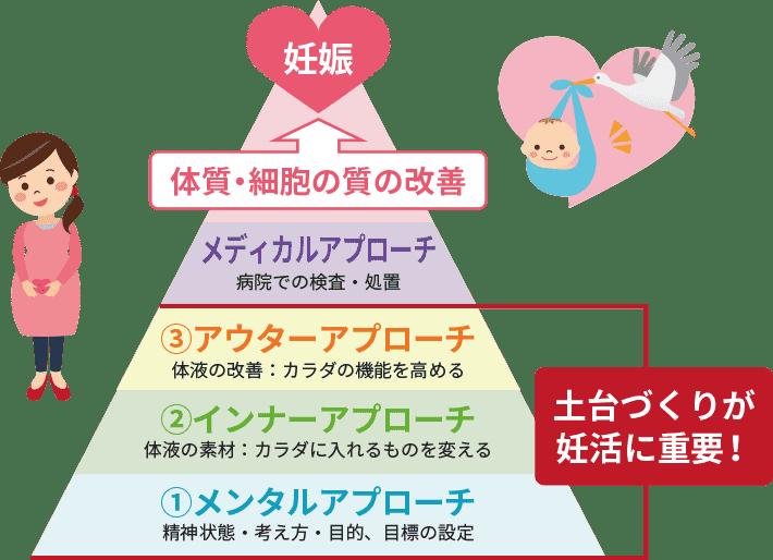 妊活ピラミッドの図
