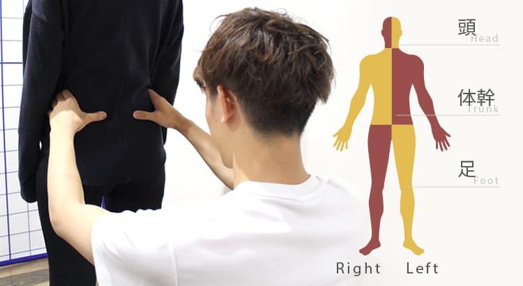 身体の歪みの原因となる頭・体幹・足部の3パターンイメージ画像