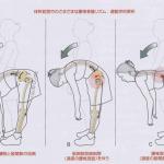 """〜腰痛の原因はどこ?あなたの""""動きの質""""をチェック〜"""