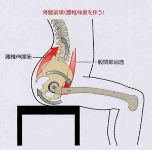 腰椎伸展1