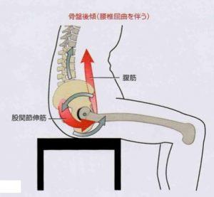 腰椎伸展2