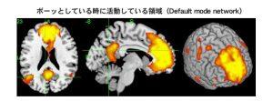 脳とこころの研究センター