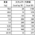 2ヵ月ダイエットのコツ【ダイエットのキホン~○○を上げる方法~】