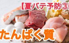 【夏バテ予防③】たんぱく質